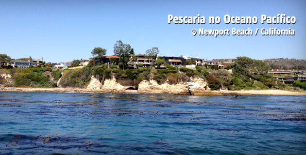 Pescaria em Newport Beach / California