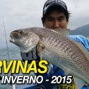 As últimas corvinas do inverno 2015 (HD/60fps)