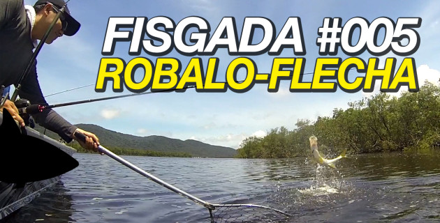 Fisgada #005 | Robalo-Flecha [Fishing Stories]
